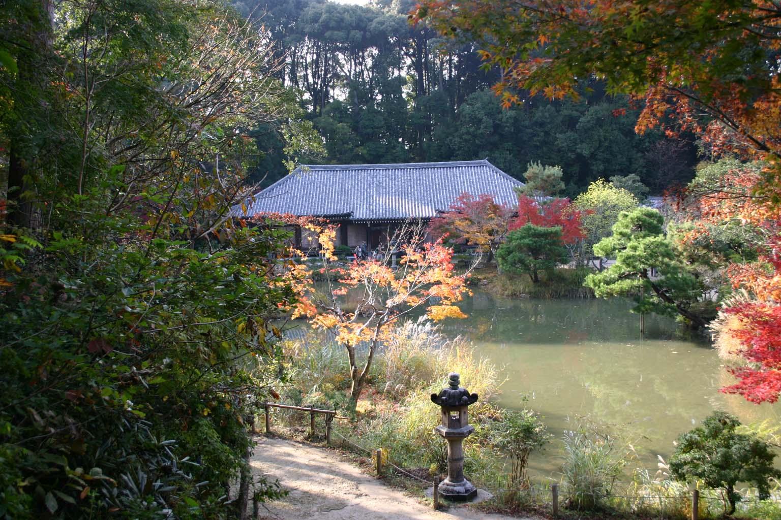 82浄瑠璃寺