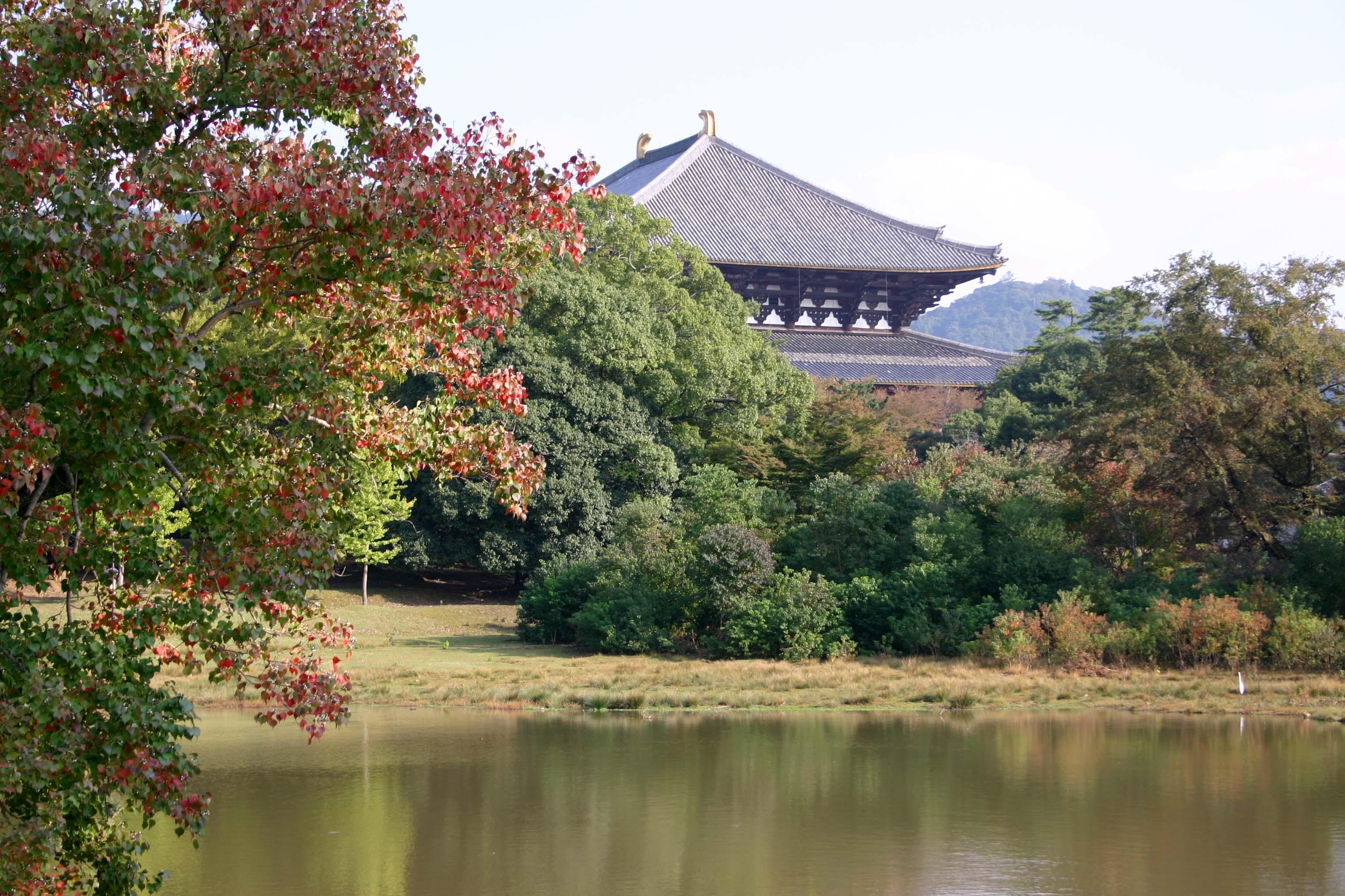 40東大寺