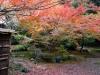 80石山寺の秋