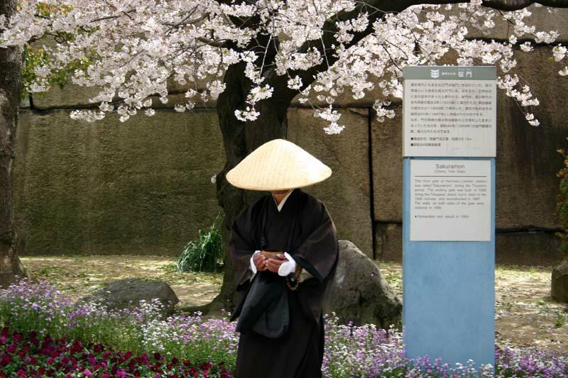 003begging-priest_under_a_cerry-tree