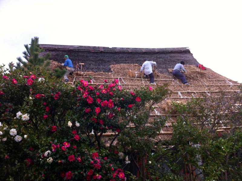 020thatch-roof