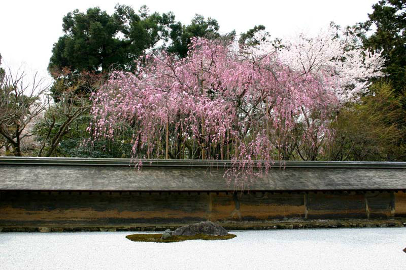 031rock-garden_of_ryoanji-temple